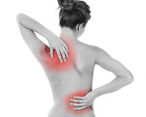 Low Back Pain Cause, Treatment, and Prevention