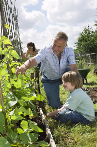 The Benefits of Gardening to your Mental and Physical Health