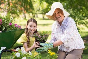 Cultivating Health In Your Garden gold coast chiropractor